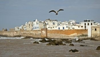 Tailor Made Morocco Trip